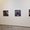 Haaga Gallery
