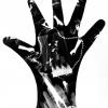 Untitled (Hand #2), 1983
