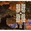 Autumn Grove/Vatican Belvedere Garden, 1997