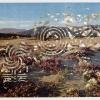 California Desert Wildflowers/French Garden Labyrinths, 1998, Detail