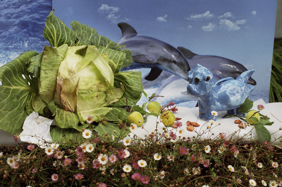 Dolphins with Cabbage, Plums and Flowers, 2008