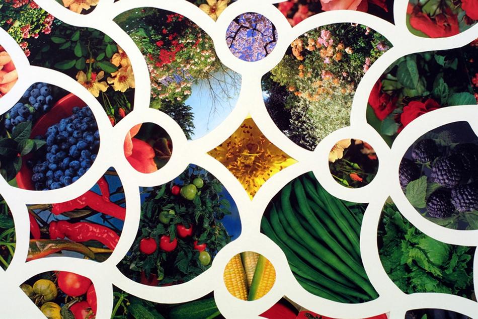 Tracery Window #19: Flowers & Food, 2002
