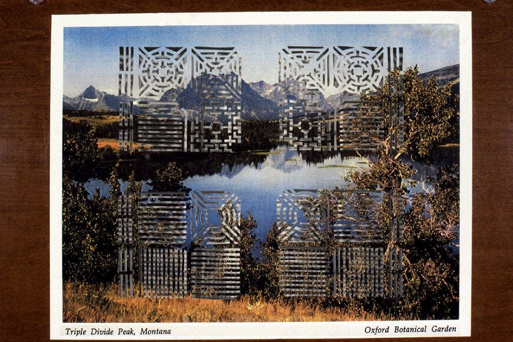 Triple Divide Peak/Oxford Botanical Garden, 1996, Detail