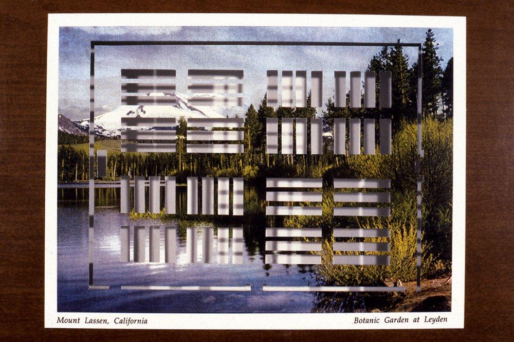 Mount Lassen, California/Botanical Garden at Leyden, 1996, Detail